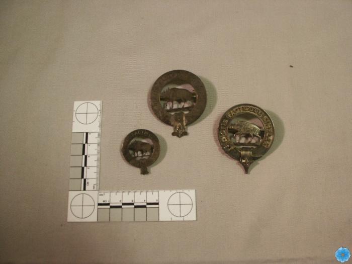 Pin, Fraternal