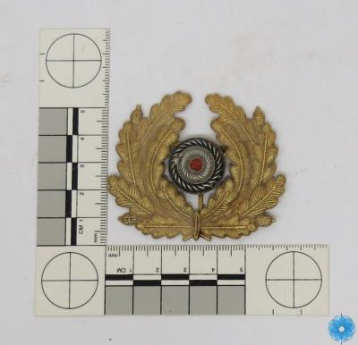 Badge, Cap