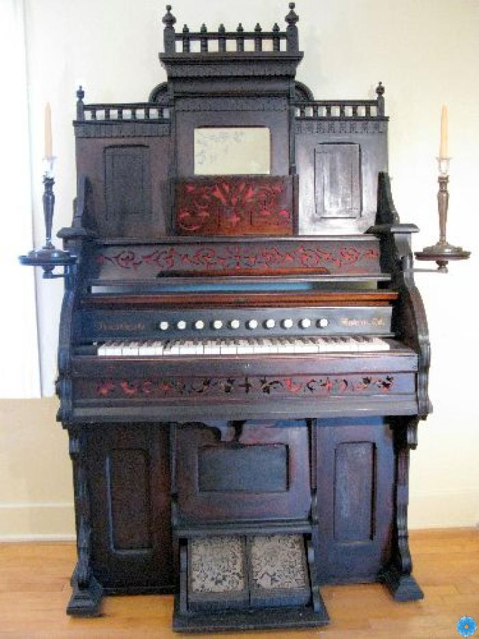 Organ, Reed