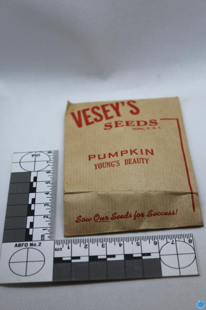 Packet, Seed