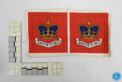 Badge. Military