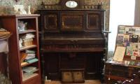Organ,Reed