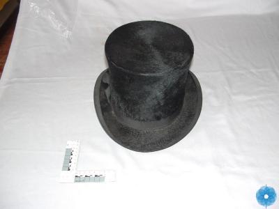 Beaver Skin Top Hat