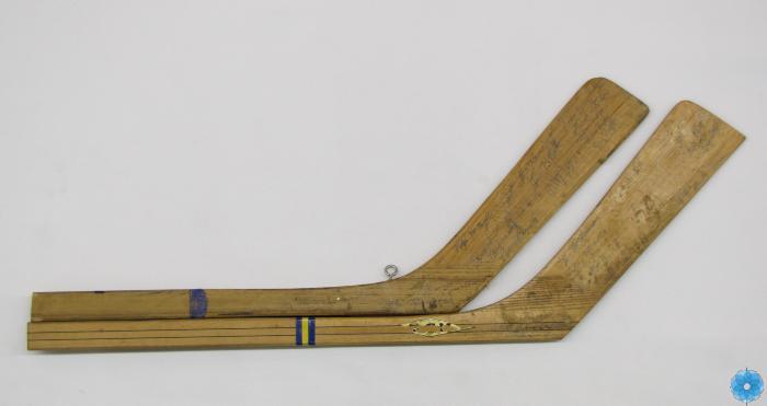 Stick, Hockey